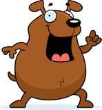Dog Idea Royalty Free Stock Image