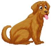 Dog. Illustration of a close up dog stock illustration