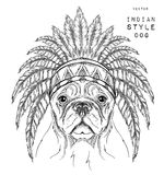 Dog in the Indian roach. Indian feather headdress of eagle. Hand draw vector illustration Royalty Free Stock Photography