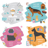 Dog info graphic template. Heatlh care, vet, nutrition, exhibiti Stock Image