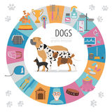 Dog info graphic template. Heatlh care, vet, nutrition, exhibition vector illustration