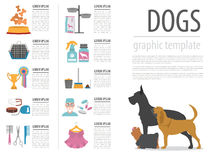 Dog info graphic template. Heatlh care, vet, nutrition, exhibiti Royalty Free Stock Photography