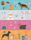 Dog info graphic template. Heatlh care, vet, nutrition, exhibiti Royalty Free Stock Photo