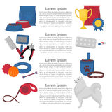 Dog infographic design elements, samoyed in flat style. Grooming, walking, veterinary, training and feeding items. Stock Photos