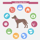 Dog infographics and icon set. What dogs need. Vector illustration in flat style Royalty Free Stock Photo