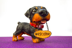 Dog with the inscription Welcome Stock Images