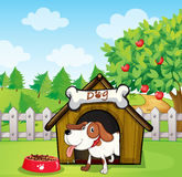 A dog inside a doghouse with a dogfood Royalty Free Stock Photos
