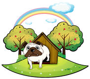 A dog inside a doghouse Stock Photography