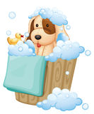 A dog inside a pail full of bubbles Stock Photo