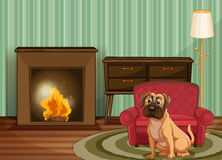 Dog inside. Dog sitting by fire inside Royalty Free Stock Photos