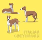 Dog Italian Greyhound Cartoon Vector Illustration Stock Photos