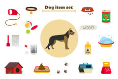 Dog items set care object and stuff. Elements around the dog. Stock Photography