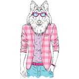 Dog in a jacket and sunglasses. Vector illustration. Animal in fashionable clothes.  Stock Photography