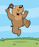 Dog Jumping. A happy cartoon dog jumping and smiling Royalty Free Stock Images