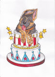 Dog jumps out of the cake Royalty Free Stock Image