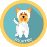 Dog Junior winner medal icon flat design Stock Photography