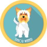 Dog Junior winner medal icon flat design Stock Photography