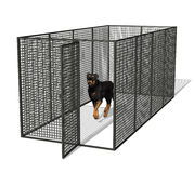 Dog in Kennel. 3D render of a rottweiler dog standing in a kennel Stock Photos