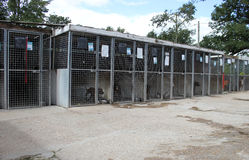 Dog kennel Royalty Free Stock Photo
