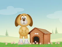 Dog and kennel. Illustration of dog and kennel Royalty Free Stock Photography