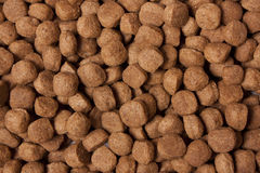 Dog Kibble Stock Photography