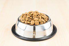 Dog Kibbles in a bowl on wooden floor Royalty Free Stock Photo