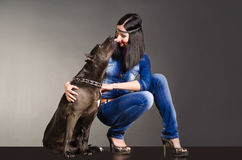 Dog kissing girl Stock Photography