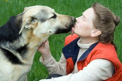 Dog kissing his mistress Stock Photography