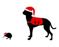 Dog and kiwi in christmas clothes Stock Photography