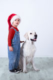 A dog the Labrador and child in Santa Claus`s Stock Photo