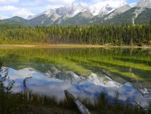 Dog Lake reflects mountains in Kootenay National Park. Spectacular mountain scenery provides colorful reflections in Dog Lake situated in the British Columbia stock images