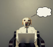 Dog with laptop. Dog businessman with laptop thinking about something over grey background royalty free illustration