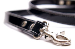 Dog Lead Horizontal Stock Photo