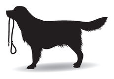 Dog with a lead. Dog silhouette with a dog lead in his mouth stock illustration