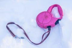Dog lead on snow Stock Photo