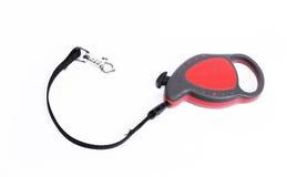 Dog leash. Over white background Stock Images