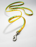 Dog leash Royalty Free Stock Photography