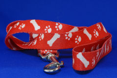 Dog leash. Red dog leash with bones and footprints on blue background Royalty Free Stock Photo