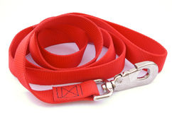 Dog Leash Stock Images