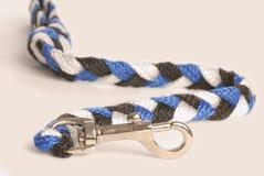 Dog leash Royalty Free Stock Photo
