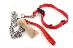 Dog leash and bone stock photos
