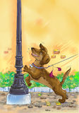 Dog on a leash. Colorful illustration of the dog on the street Royalty Free Stock Photo