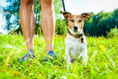 Dog leash and owner Royalty Free Stock Photo
