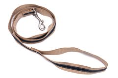 Dog leash with quick release clasp bucket. A photo taken on a dark blue stripe dog leash with quick release clasp bucket against a white backdrop Royalty Free Stock Images