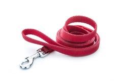 Dog leash stock photos