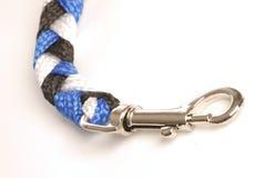 Dog leash snap Stock Photo
