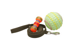 Dog leash and toys. Royalty Free Stock Photos