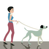 Dog leash. Stock Image