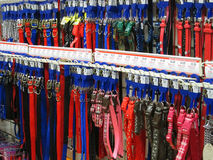 Dog leashes or leads. royalty free stock image