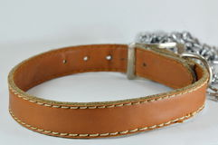 Dog leather collar and lead chain Royalty Free Stock Photos